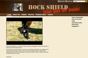 Hock Shield.com Before